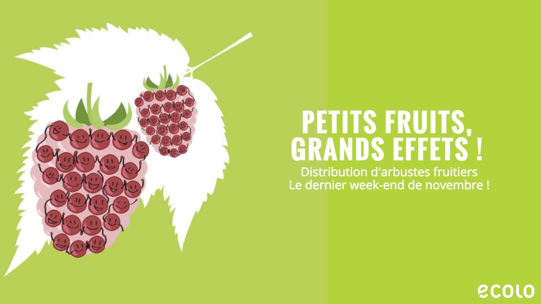 Petits Fruits Grands Effets !